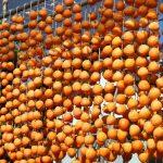 干し柿の食べ過ぎの影響は?1日の食べる量はどのくらいがいい?